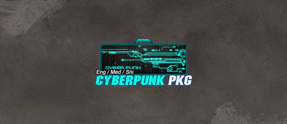 wr-insidepost-cyberpunkemspkg.jpg
