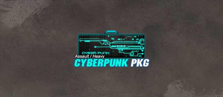 wr-insidepost-cyberpunkahpkg.jpg